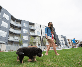 Questions to Ask Before Buying an Apartment Condo Puppy Image