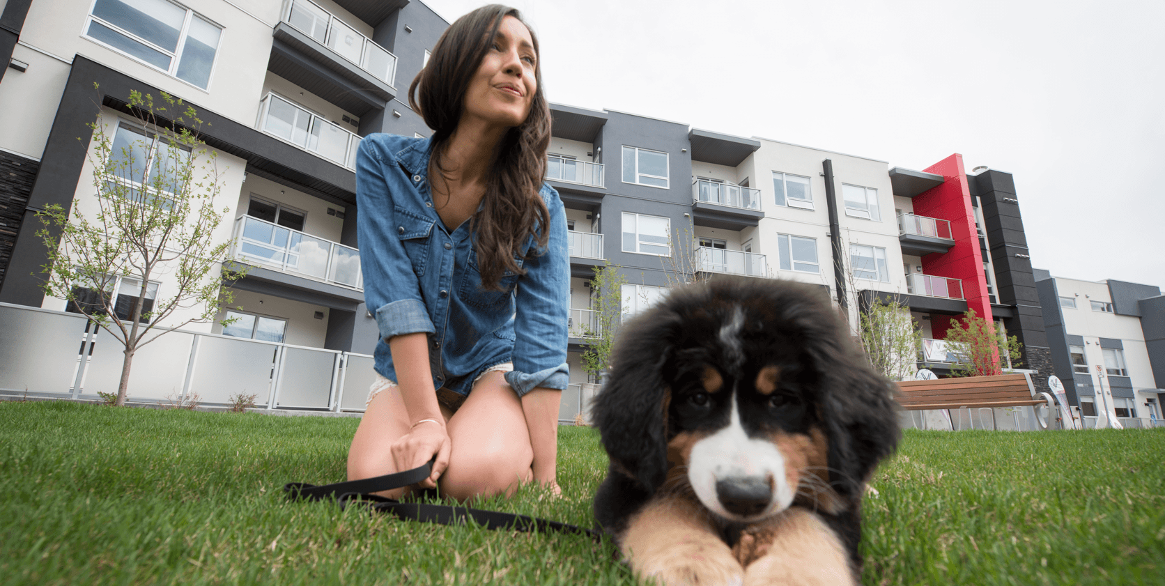 Condo Living How to Choose the Right Pet Puppt Image