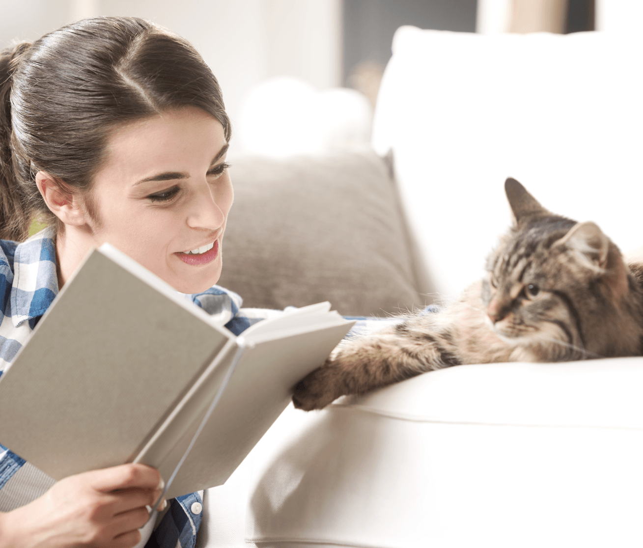 Condo Living How to Choose the Right Pet Cat Image