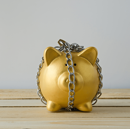 Reasons Why You Need an Emergency Fund Pig Image